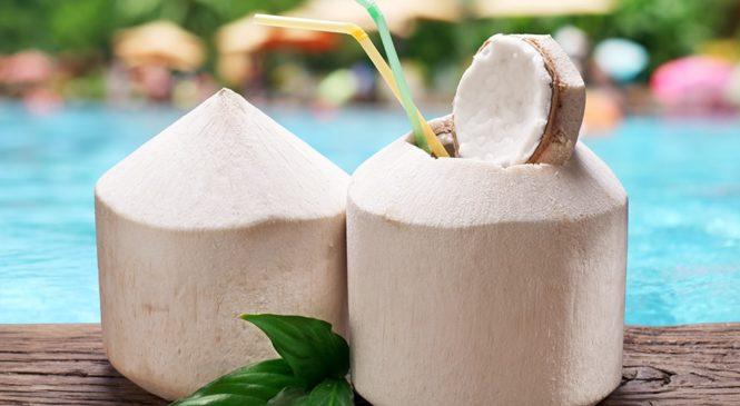 Kokoswasser – das Wasser des Lebens.