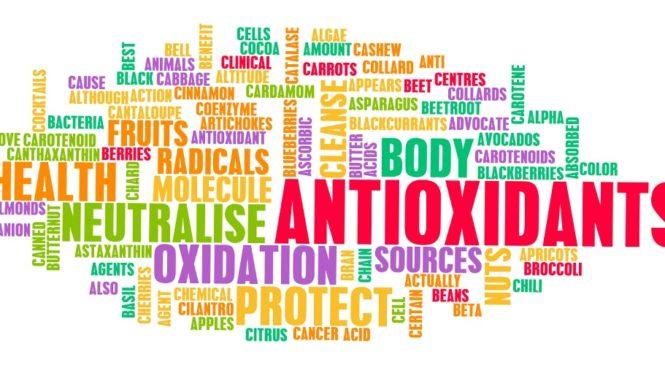 Antioxidantien in Chia Samen – der Booster schlechthin.