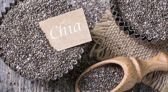 Chia Samen kaufen – Tipps und Tricks von Food-Experten