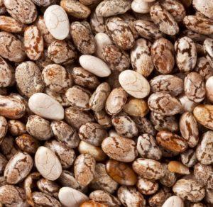 Was sind Chia Samen