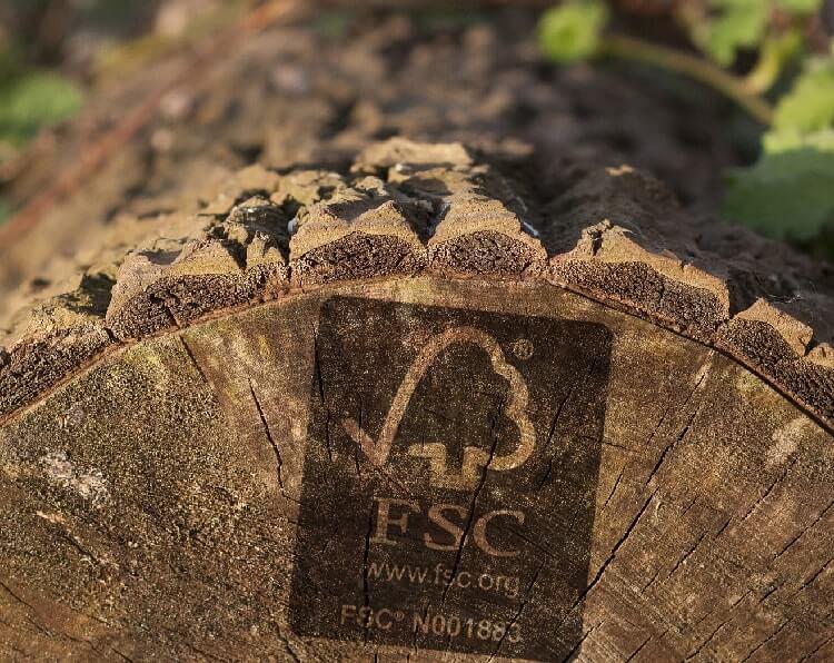 FSC Holz