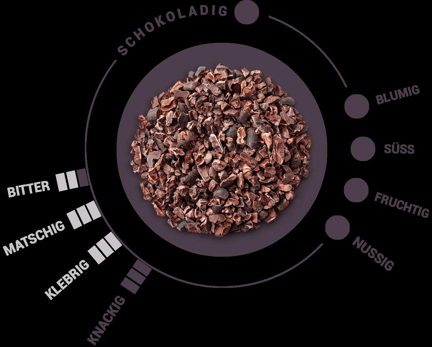 Kakaonibs Geschmacksrad