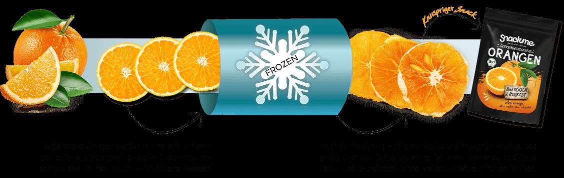 Gefriertrocknung Prozess Orangen