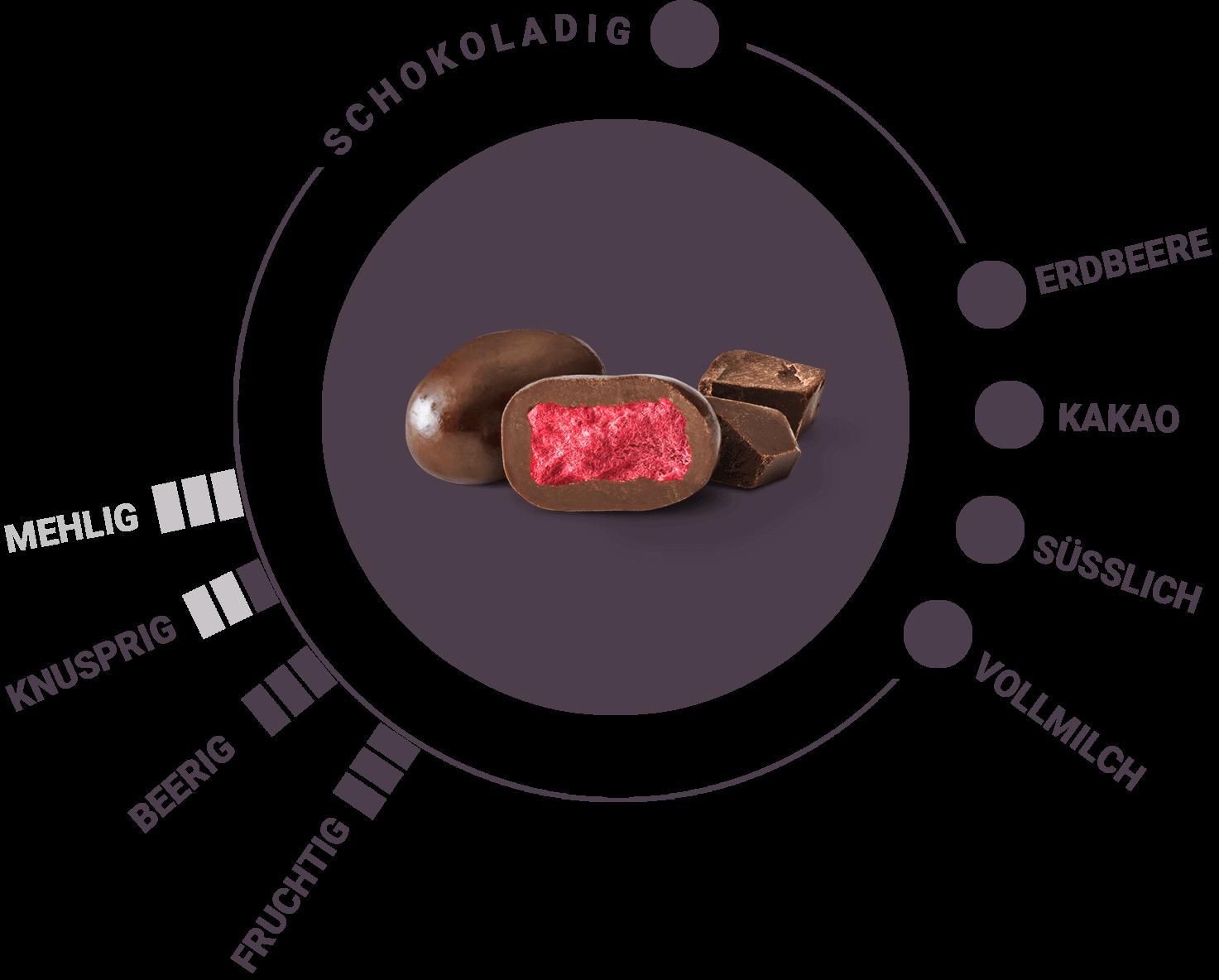 Bio gefriergetrocknete Erdbeeren in Vollmilchschokolade Geschmack