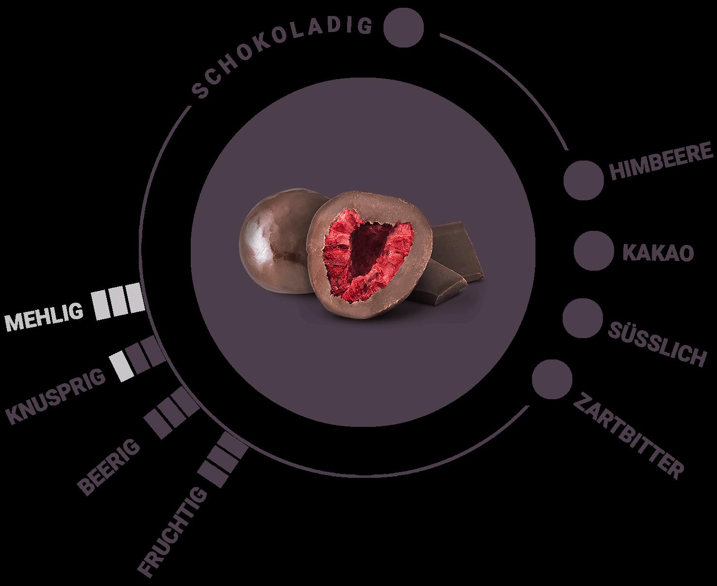 Bio gefriergetrocknete Himbeeren in Zartbitterschokolade Geschmack