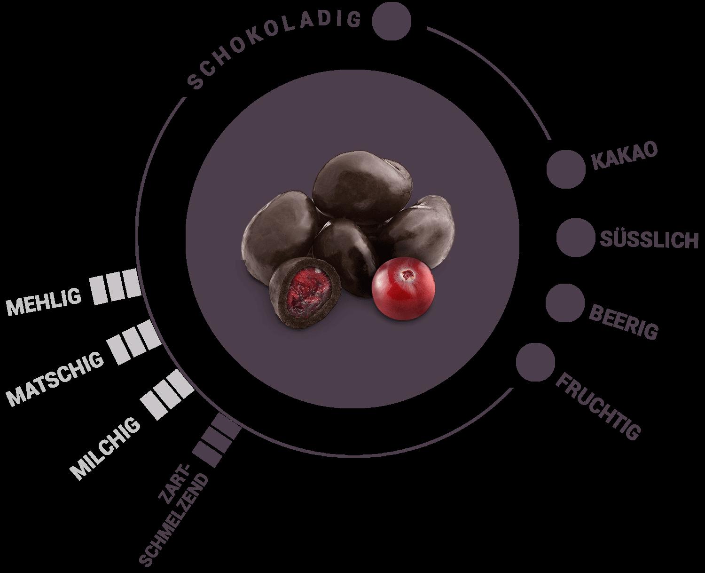 Bio Cranberries  in Zartbitterschokolade Geschmack