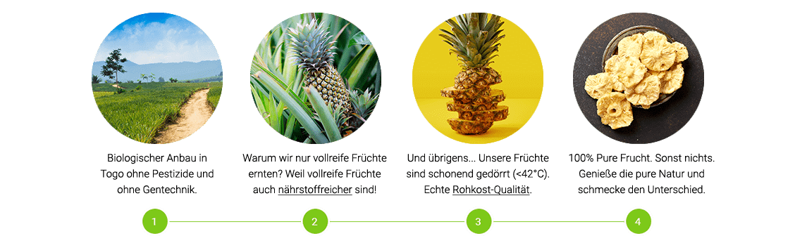 Getrocknete Ananas Cayenne Supply Chain