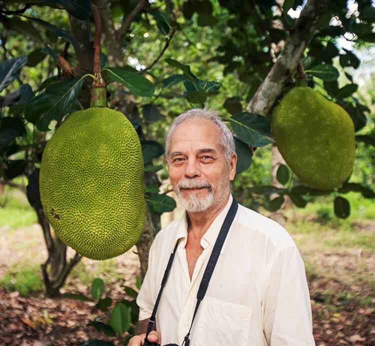 Jackfrucht Sri Lanka