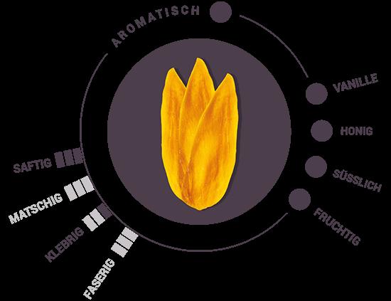 Bio getrocknete Mango Geschmack