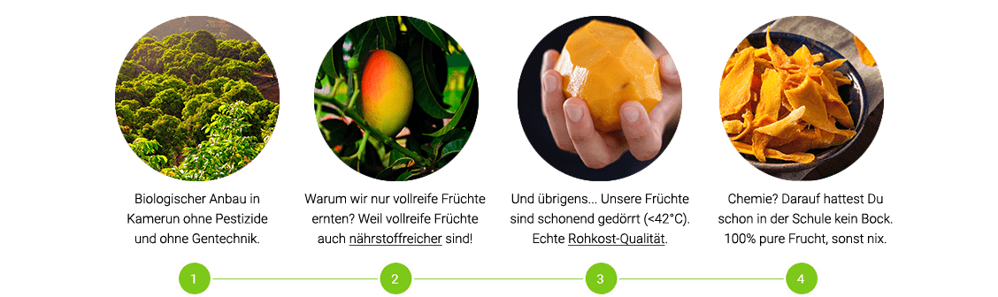 Getrocknete Mango Supply Chain